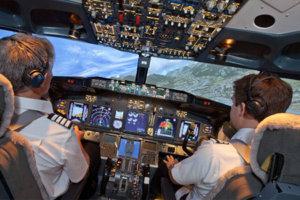 Motion platform flight simulator