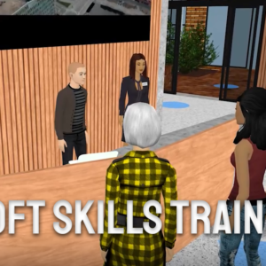 PaleBlue Introduces Soft Skills Training